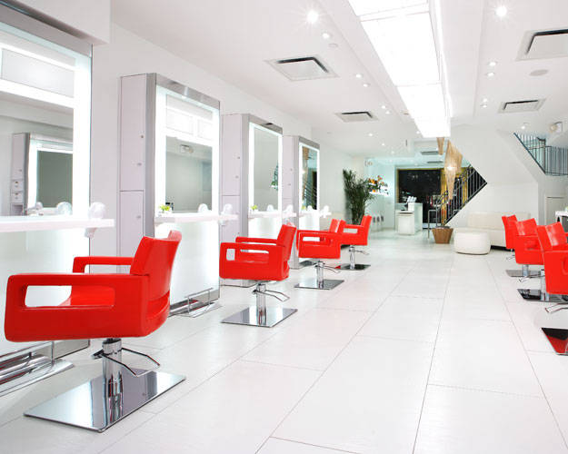 Swanky Hairplace